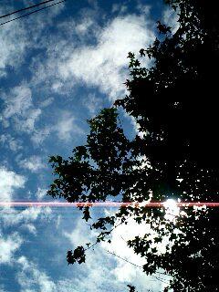 image/chibihachi-2006-07-12T09:26:54-1.jpg