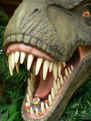 恐竜に・・.jpg