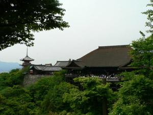 新緑の清水寺.jpg